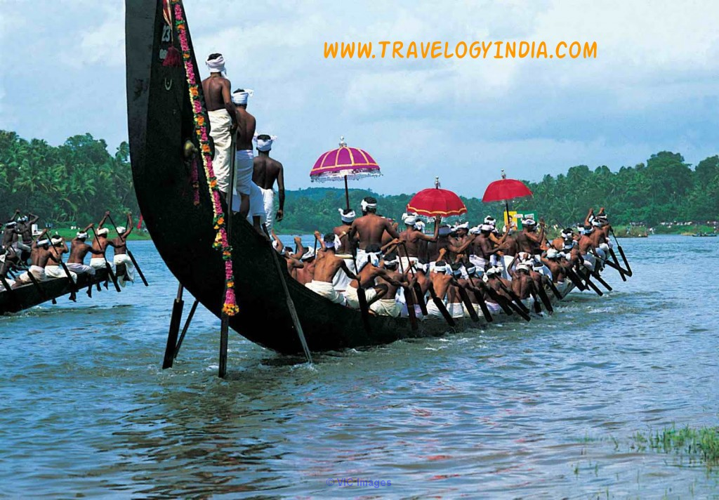 Tour Packages India From USA Explore It with All Inclusive losangeles